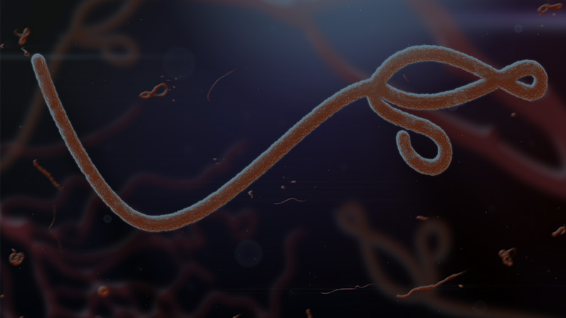 An Analysis of Ebola Coverage in Politicized U.S. Media