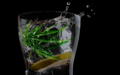 Cannabis-Infused Drinks: Exploring the New Beverage Trend