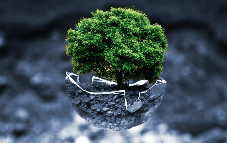 Sustainable Finance: The Rise of the Value-Driven Investor