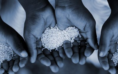 Food Security: How Have Non-Profits Shaped the Debate Around World Hunger During Covid?